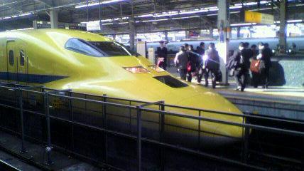 YellowShin01.jpg