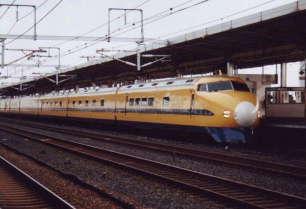 YellowShin04.jpg